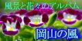 Kaze_12060_03_2