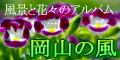 Kaze_12060_03